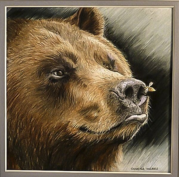 sandra-weeks-bear