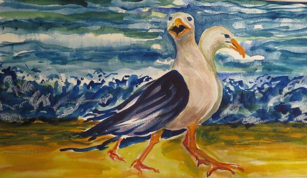 sheila-connor-seagulls